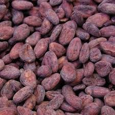 Dried Grade Beans of Cacao